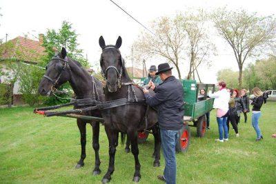 lovacskocsival